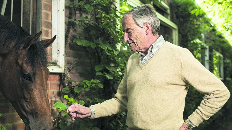 Luca Cumani: trainer of seven Classic winners at Bedford House Stables