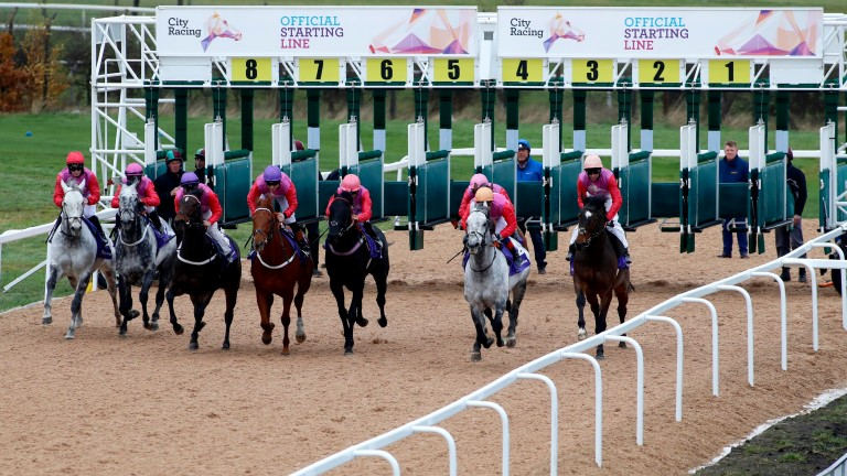 The runners break from the stalls in the City Racing demonstration