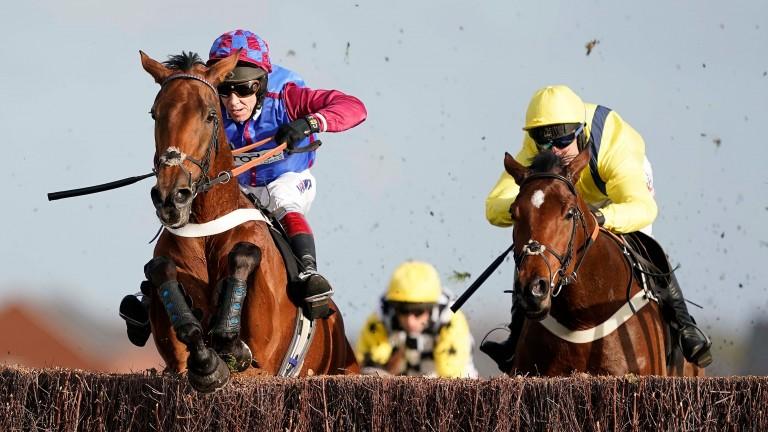 La Bague Au Roi: unbeaten over fences for Warren Greatrex