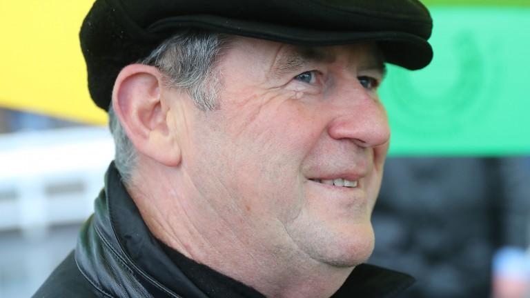 JP McManus: 54 winners at the Cheltenham Festival