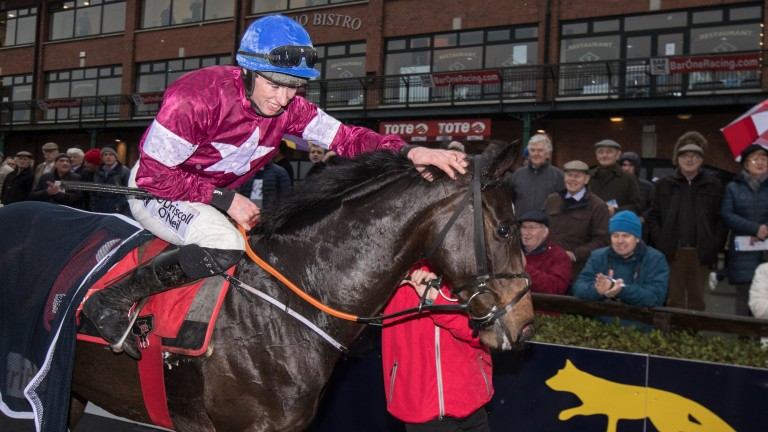 Apple's Jade: back to defend her title in the Squared Financial Christmas Hurdle