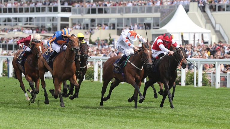 Signora Cabello (white) lands the Queen Mary Stakes at Royal Ascot in 2018