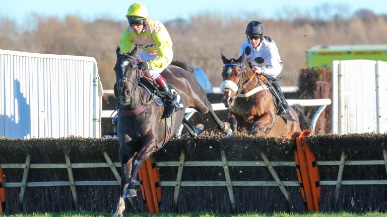 Kensukes Kingdom won at Musselburgh on Monday before he suffered a fatal injury