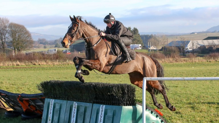 One For Arthur schooling at home for Lucinda Russell for the first time since his Grand National win
