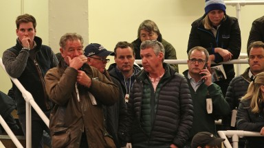 The Coolmore team contemplate their next bid. MV Magnier (glasses, second right) signed for Heartache at 1,300,000gns