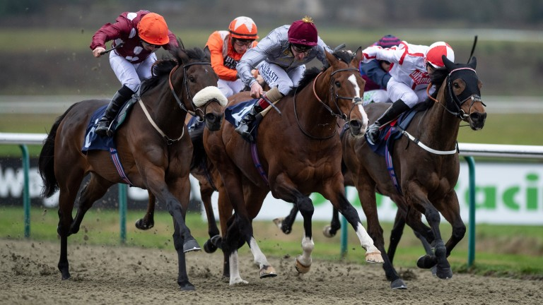 Mango Tango (left) beats Toast Of New York (centre) and runner-up Scarlet Dragon