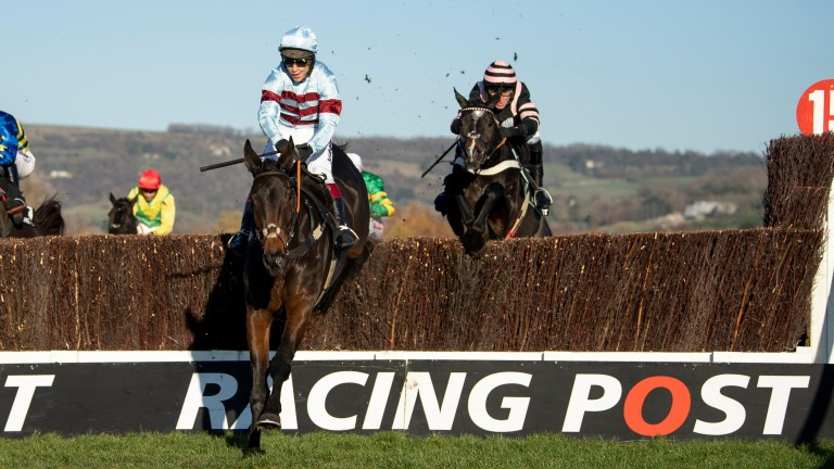 Lalor: made exciting start to chasing career at Cheltenham last month