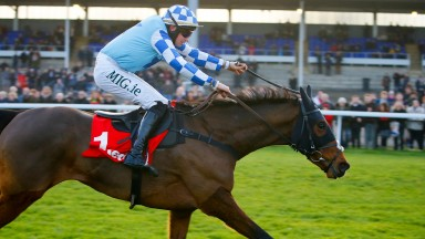 Double Shuffle: bids to get back on track after a first-fence fall in the Charlie Hall Chase