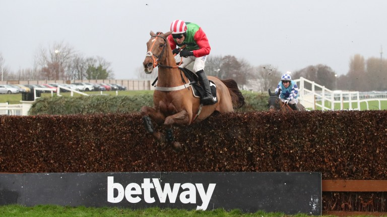 Definitly Red: registers his fifth Grade 2 success in the Many Clouds Chase