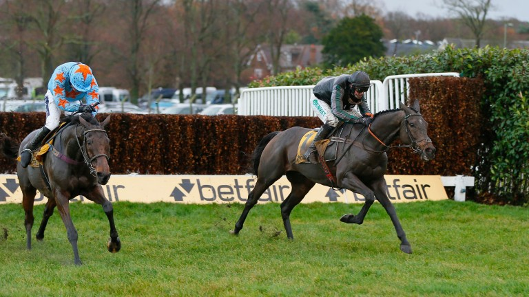 Altior (right): options include the Desert Orchid Chase at Kempton and the Clarence House Chase at Ascot