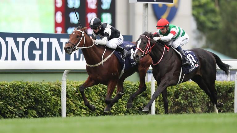 Exultant defeats Lys Gracieux in the Hong Kong Vase