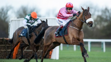 Brewin'upastorm: looks an exciting prospect for Olly Murphy