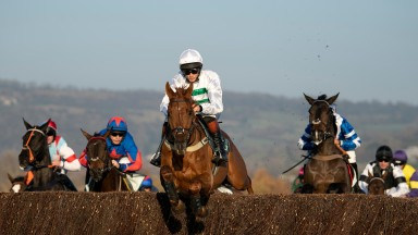 Jumped well, made all: Baron Alco keeps it simple on the way to victory at Cheltenham