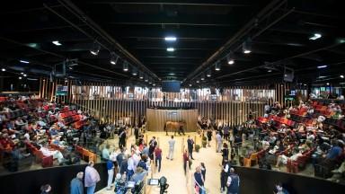 Arqana: turnover hit €2,069,500 on Monday