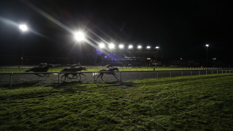 Kempton: stages racing under the lights on Wednesday