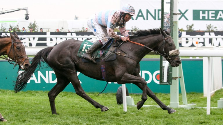 Jester Jet: fancied to win over fences for the first time