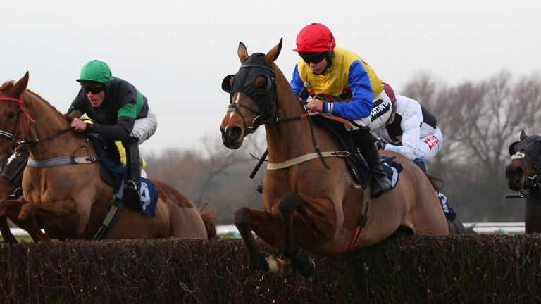 Silent Steps (nearside) clears a fence on their way to victory at Southwell on December 4.
