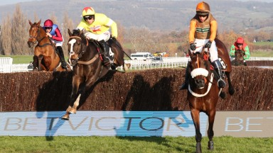 Theatre Territory (Sam Waley-Cohen) leads Ibis Du Rheu over the last at Cheltenham last month