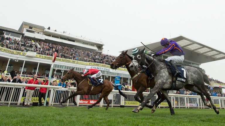 The New One (far side) just holds on in a thrilling finish to the Aintree Hurdle in 2014