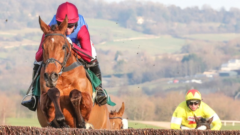 The Worlds End: cut to 16-1 by Paddy Power for the RSA Chase