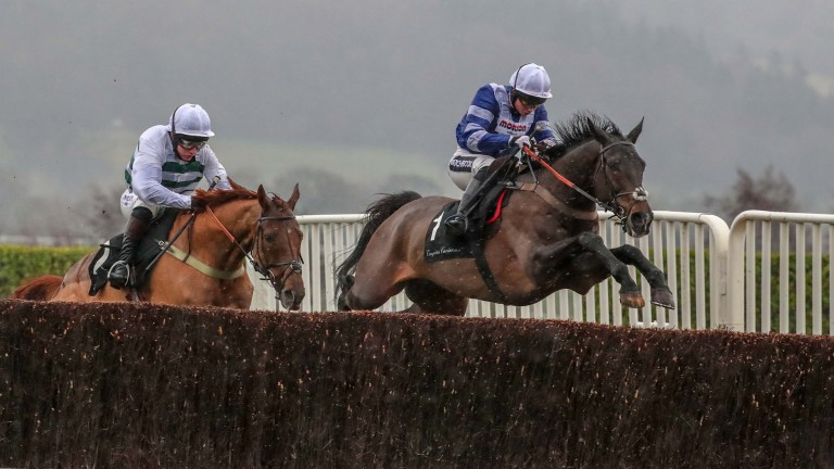 FRODON Ridden by Bryony Frost wins at Cheltenham 15/12/18Photograph by Grossick Racing Photography 0771 046 1723