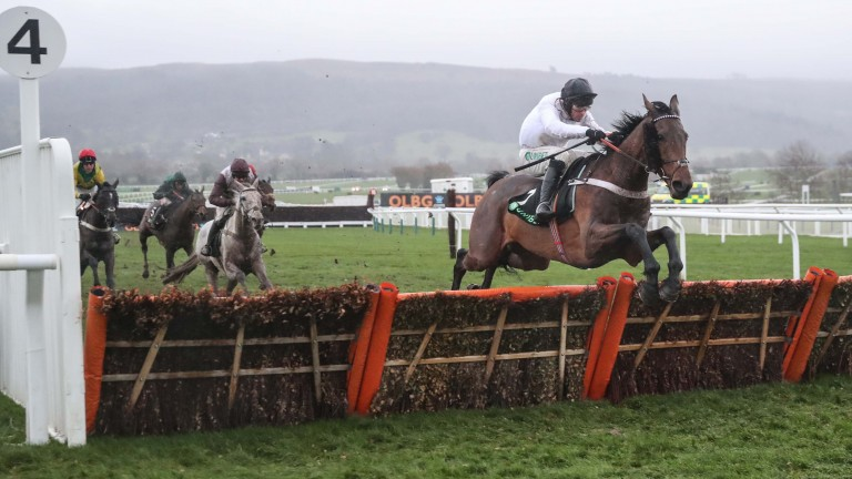 Brain Power is way out in front at the final flight in the International Hurdle