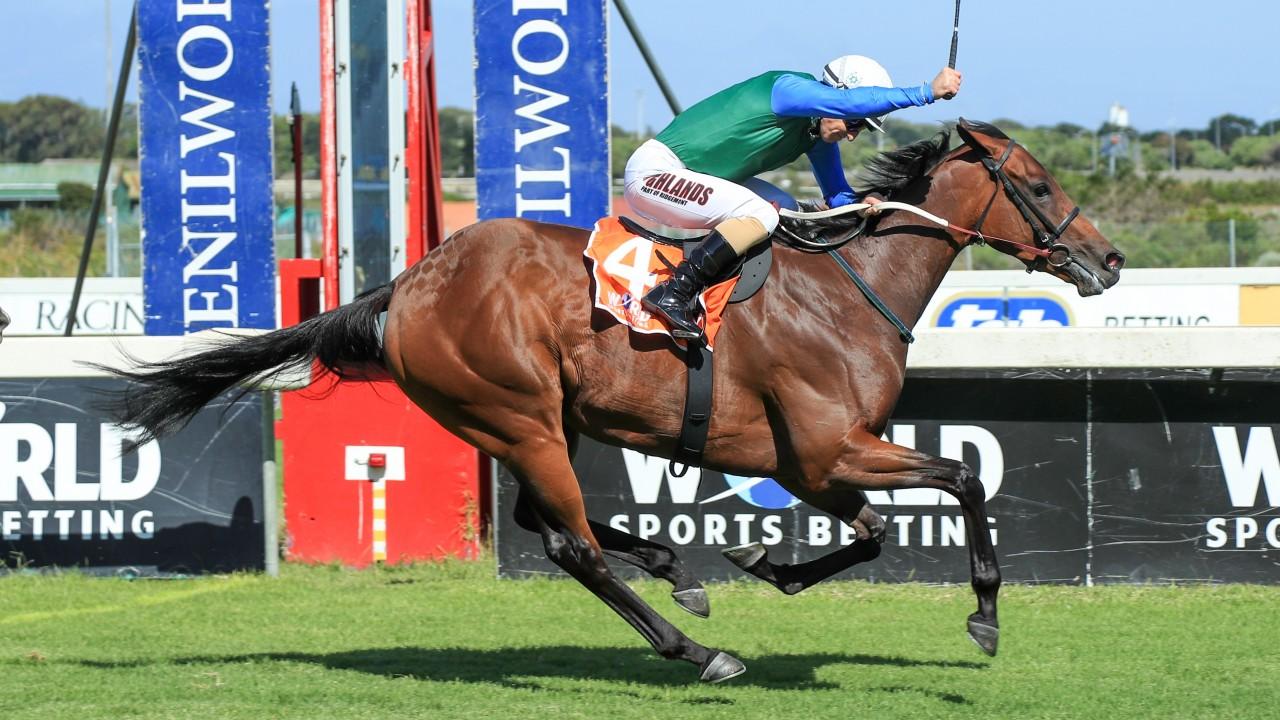 Kenilworth horse racing betting for dummies buy bitcoins fast uk