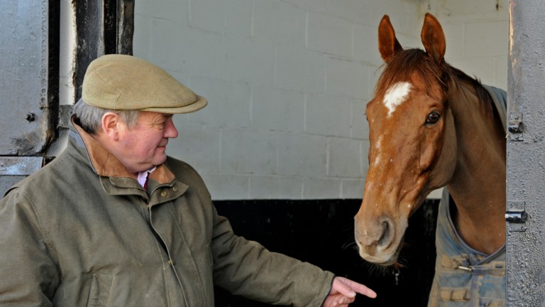 17-year-old Victory Gunner in his box with trainer Richard Lee at his Herefordshire stables (January 15, 2015) Picture: David Dew