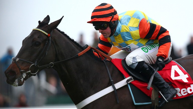 Might Bite: pushed out to 14-1 for the Cheltenham Gold Cup