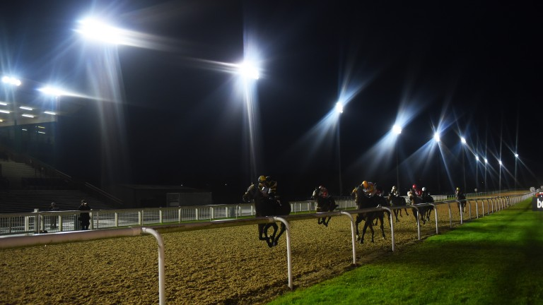 Racing takes place at Wolverhampton on Friday