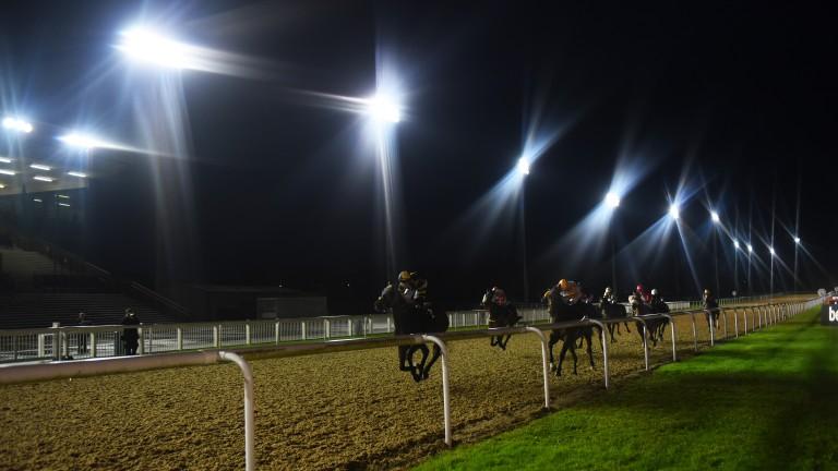 Wolverhampton hosts seven races on the Tapeta tonight