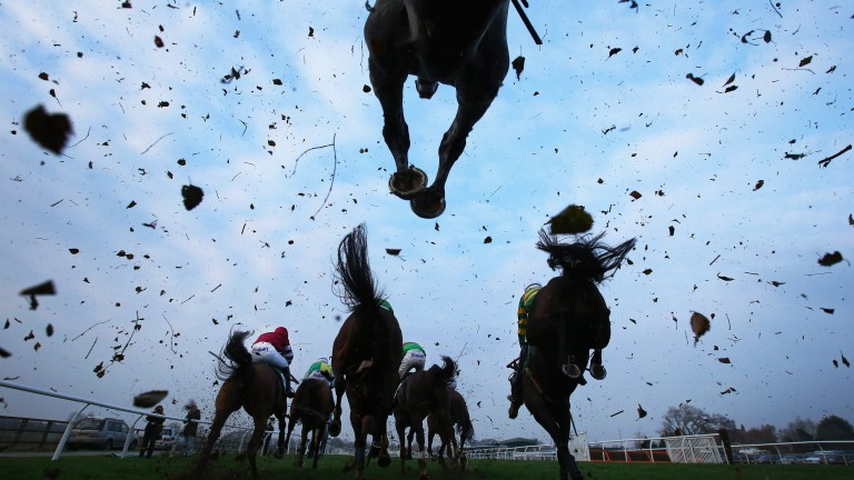 Jump racing is due to come into line with rules on the Flat with regard to wearing horseshoes on all four hooves from February 1