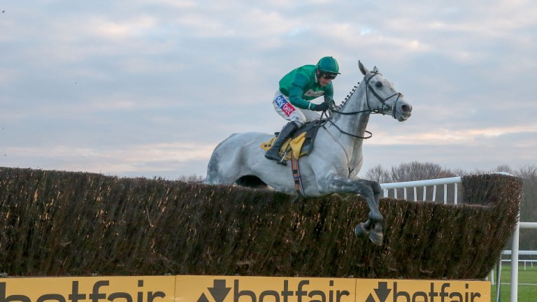 Bristol De Mai: goes to Kempton on Boxing Day in better shape than last year