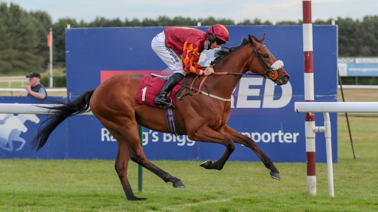 Tom Greatrex shows his winning style on Bodes Well at Haydock in June