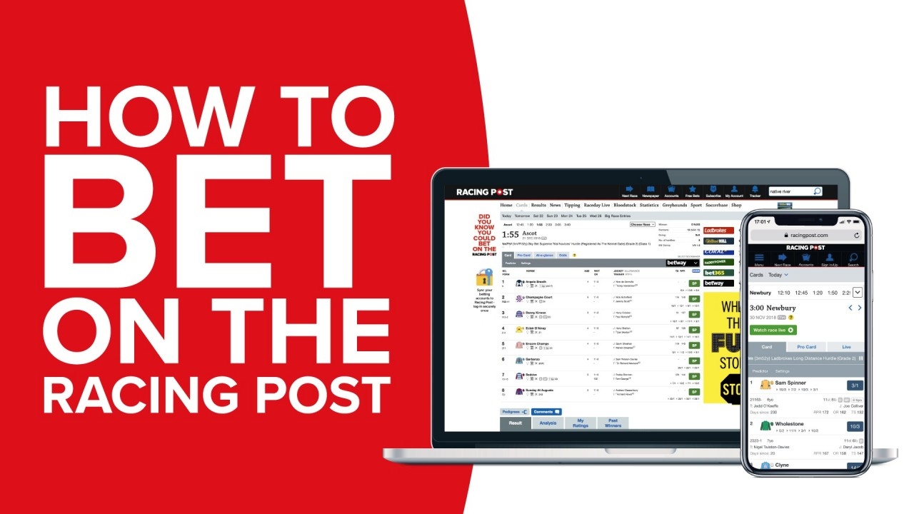 racing post betting site results www