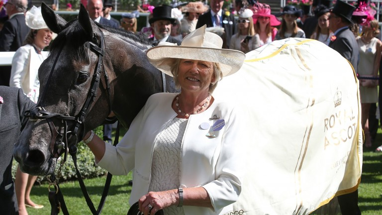 Summer starlet: Alpha Centauri shares a winning moment at Royal Ascot with trainer Jessica Harrington