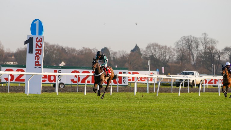 Altior and Noel Fehily winning the Wayward Lad Novices' Chase