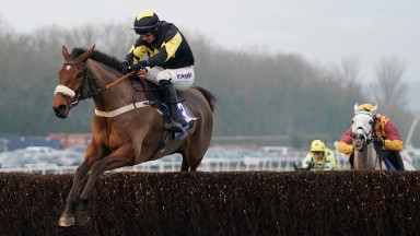 Elegant Escape and Tom O'Brien lead Ramses De Teilee in the Welsh Grand National