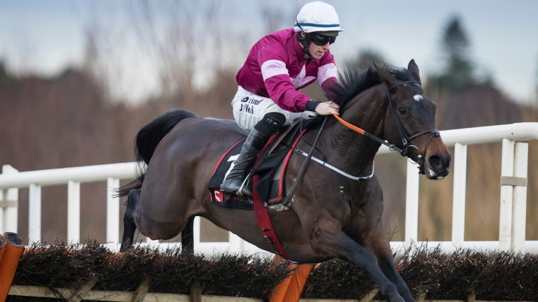 Apple's Jade: drops back in trip in the Champion Hurdle