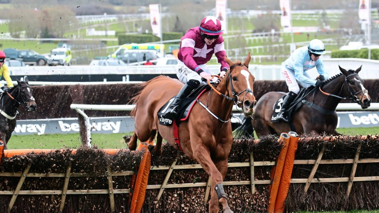 Samcro, pictured here winning at Cheltenham last March, will begin a course of antibiotics to treat a deep-seated lung infection