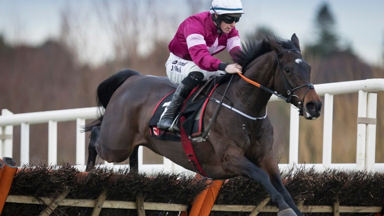 Apple's Jade and Jack Kennedy clear the last to win the Squared Financial Christmas Hurdle at Leopardstown