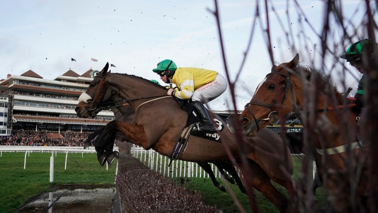 Mandarin winner Carole's Destrier produced a commendable effort in the Classic Chase