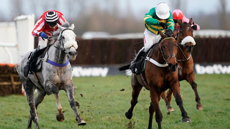 Champ has solidified as favourite for the Ballymore Novices' Hurdle