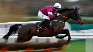 Apple's Jade: matched her career-best RPR when winning the Christmas Hurdle at Leopardstown