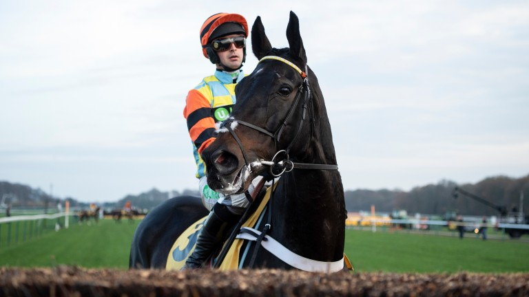 Might Bite: finished a well-beaten seventh in the King George VI Chase