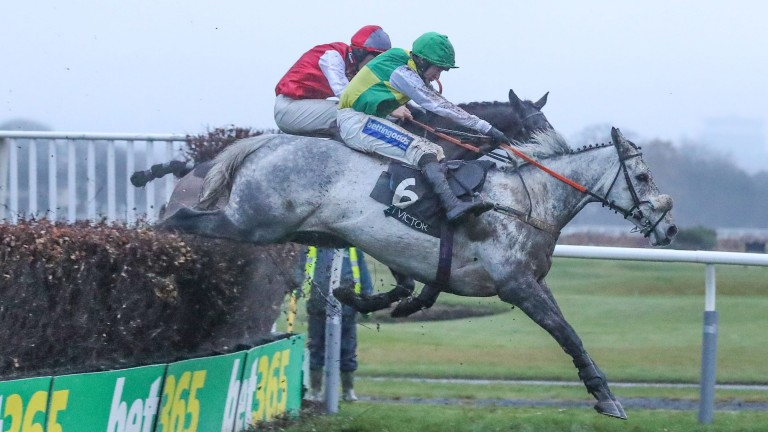 Lake View Lad (near): won the Rehearsal Chase and Rowland Meyrick Chase in December