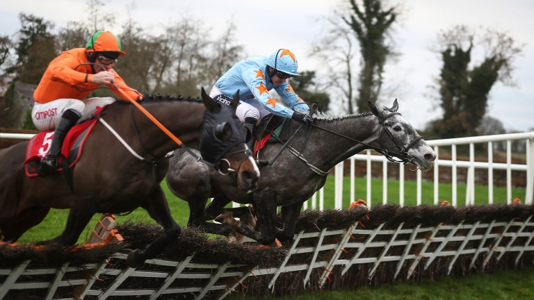 Bachasson (far side): won conditions hurdle at Punchestown on New Year's Eve