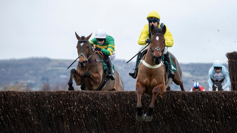 Lostintranslation (yellow): striking victory in the Dipper Novices' Chase