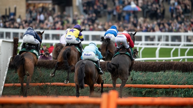 Runners in the 2m 4f handicap chase take the fence in front of the standsCheltenham 1.1.19 Pic: Edward Whitaker