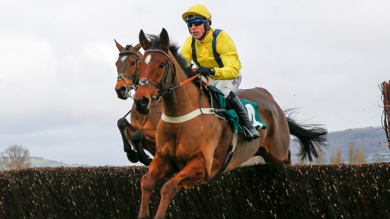 Lostintranslation: a Gold Cup horse next year?